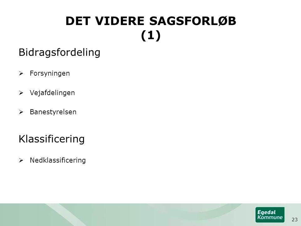 DET VIDERE SAGSFORLØB (1)
