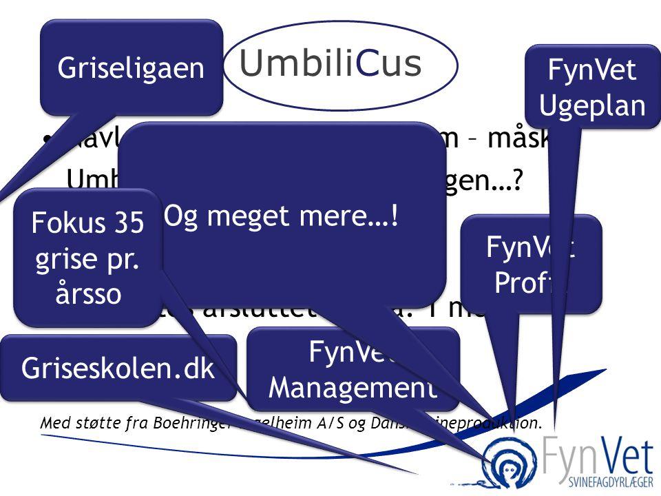 UmbiliCus Griseligaen FynVet Ugeplan