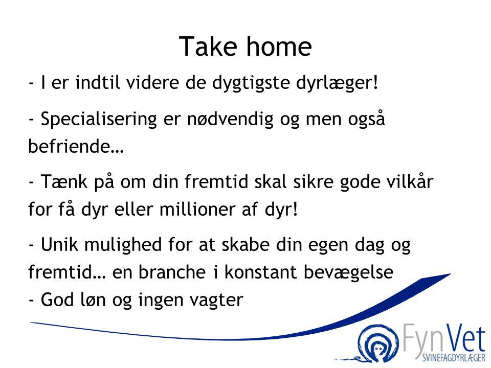 Take home - I er indtil videre de dygtigste dyrlæger!