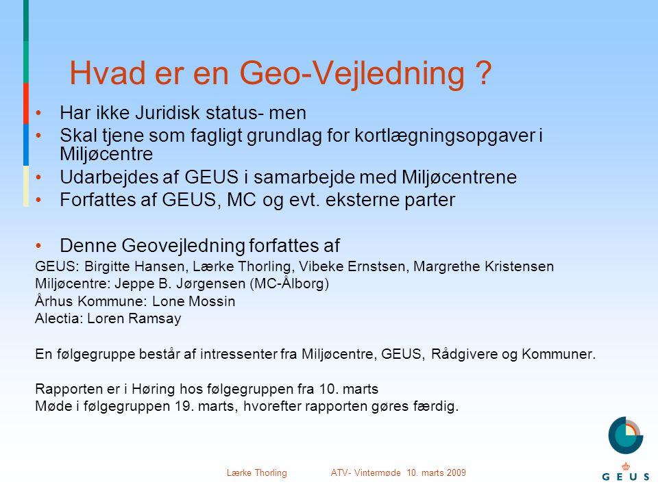 Hvad er en Geo-Vejledning