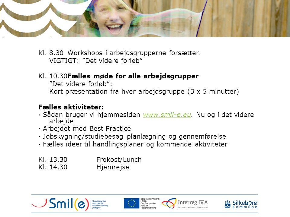 Kl. 8.30 Workshops i arbejdsgrupperne forsætter.