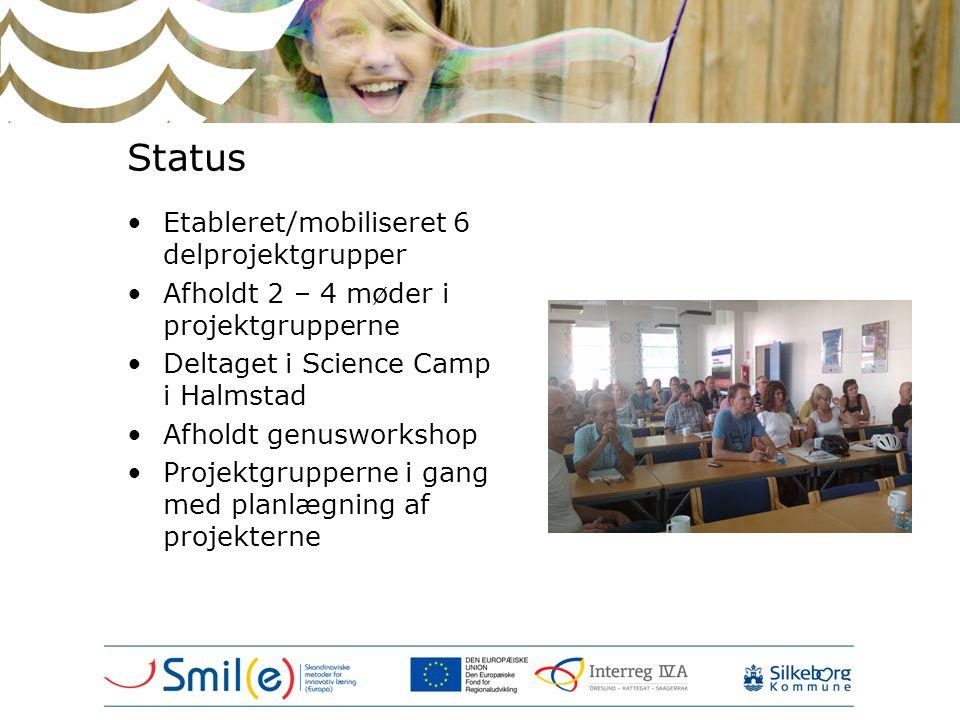 Status Etableret/mobiliseret 6 delprojektgrupper