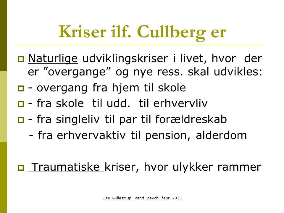 Lise Gullestrup, cand. psych. febr. 2013