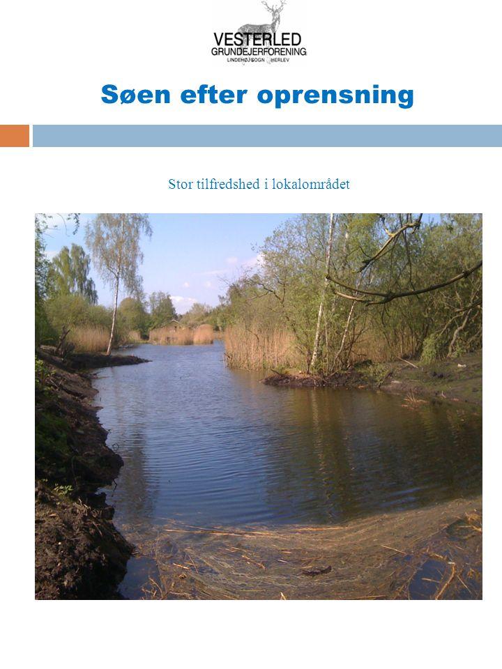 Søen efter oprensning Stor tilfredshed i lokalområdet
