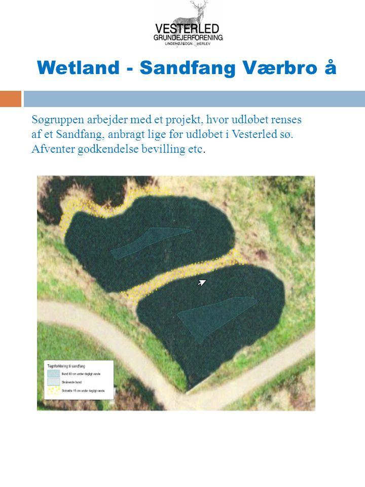 Wetland - Sandfang Værbro å
