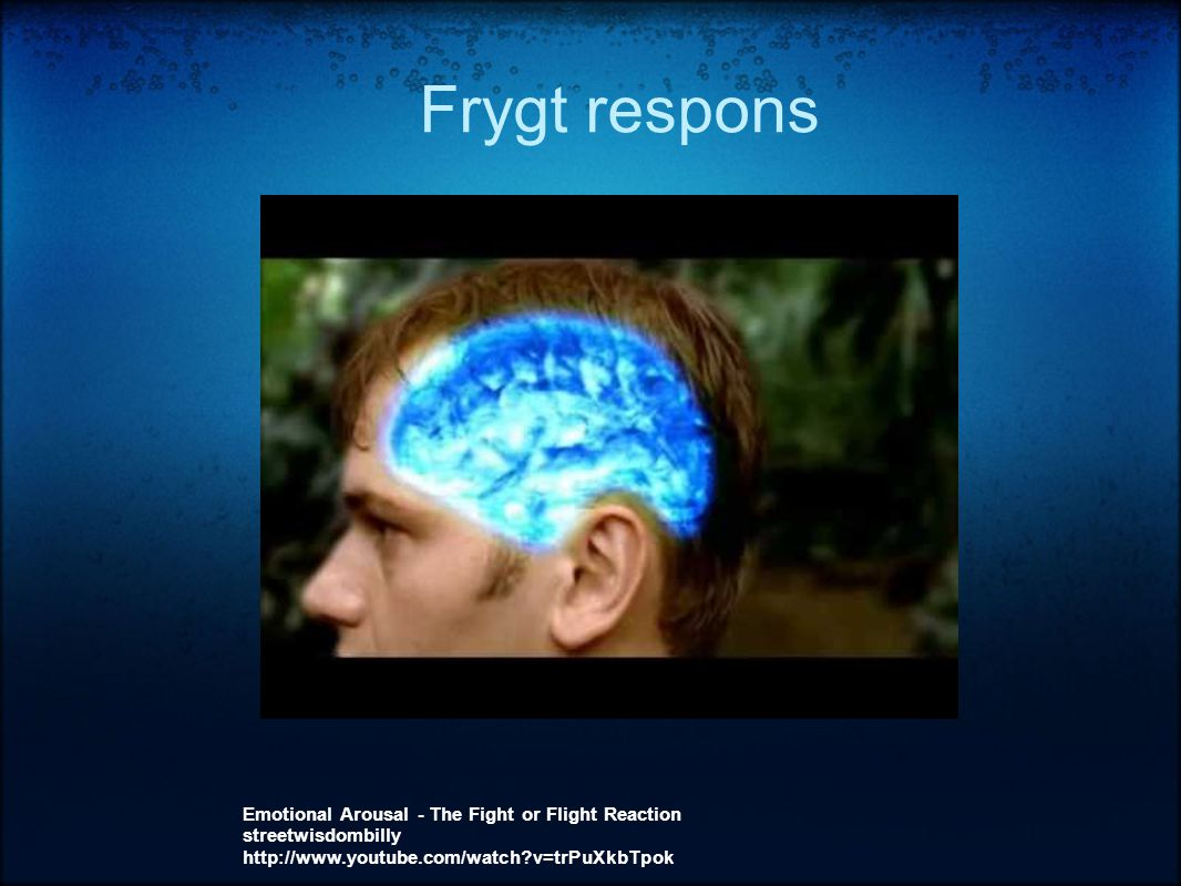 Frygt respons Emotional Arousal - The Fight or Flight Reaction