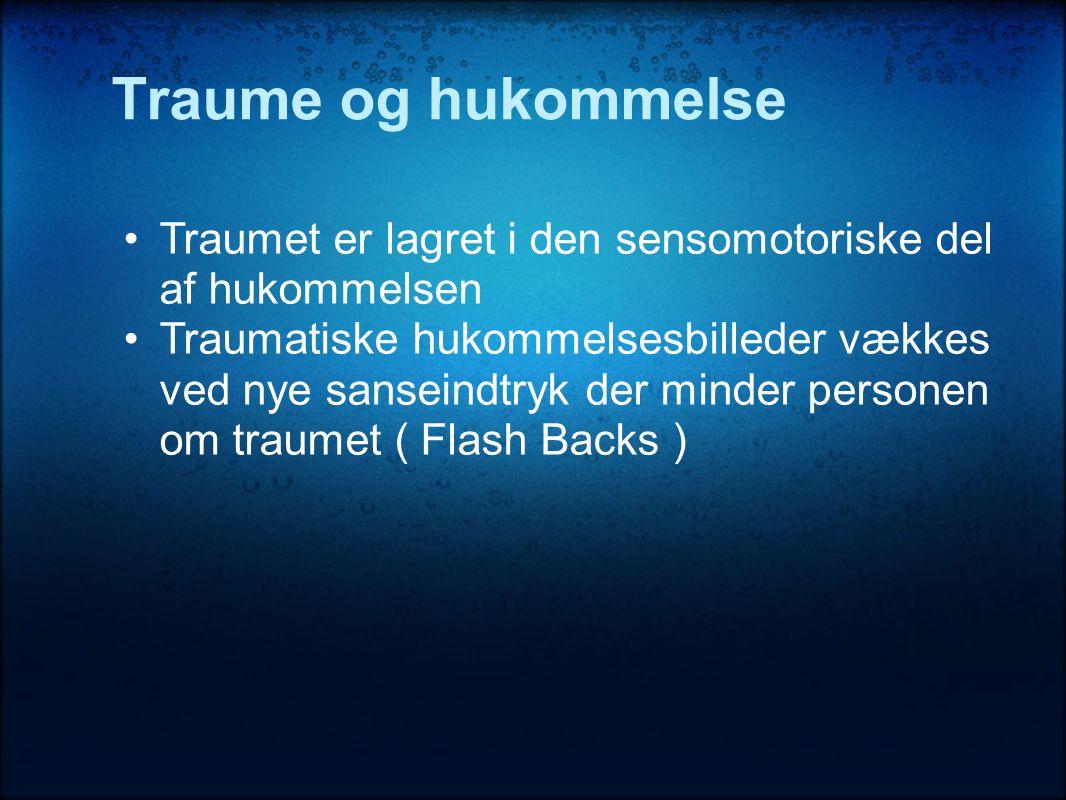 Traume og hukommelse Traumet er lagret i den sensomotoriske del af hukommelsen.