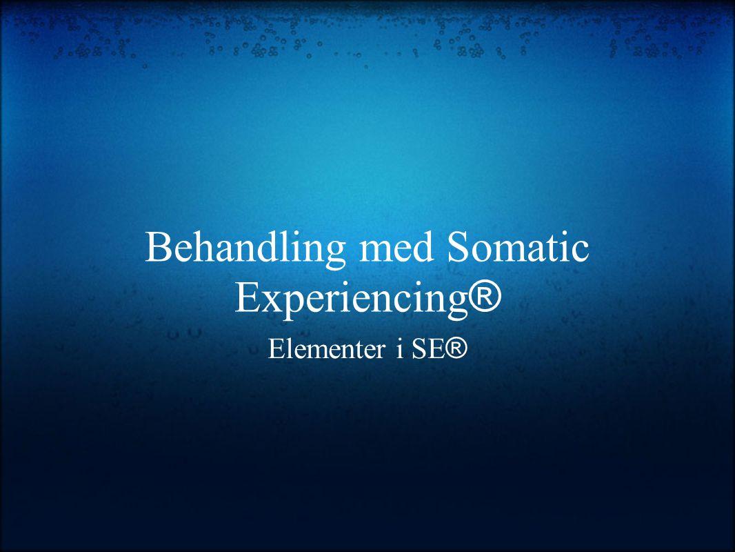 Behandling med Somatic Experiencing®