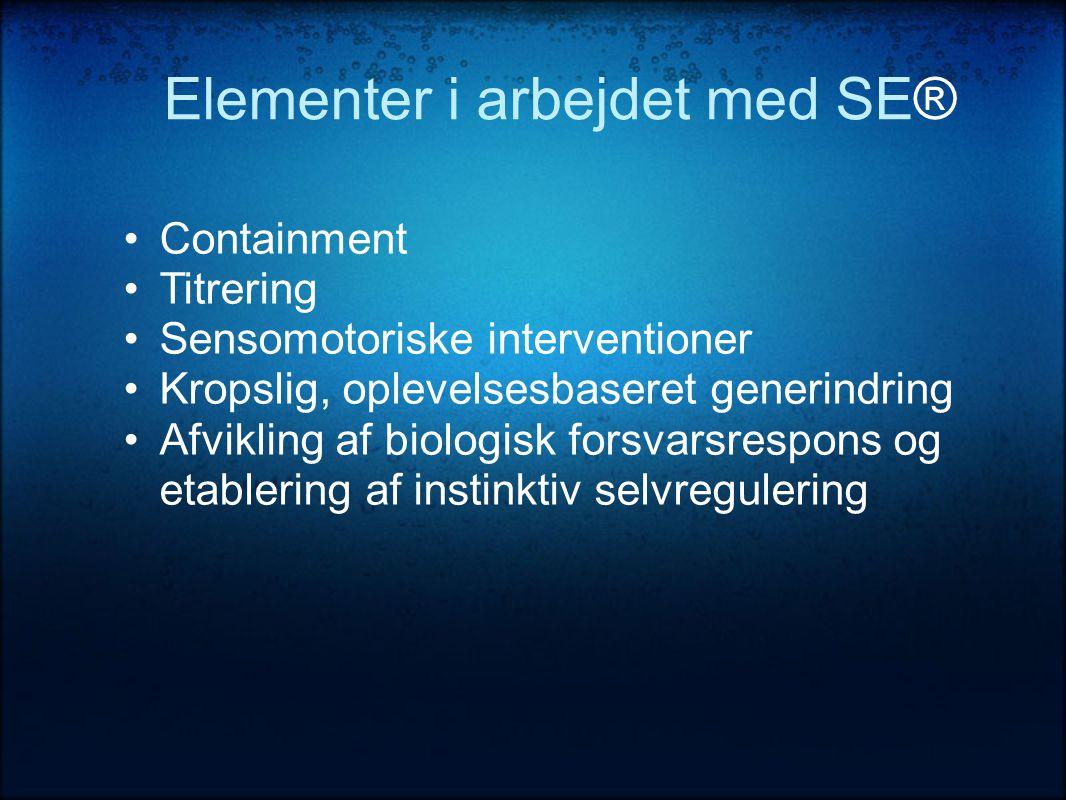 Elementer i arbejdet med SE®