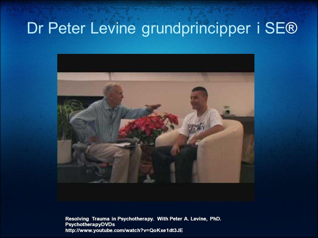 Dr Peter Levine grundprincipper i SE®