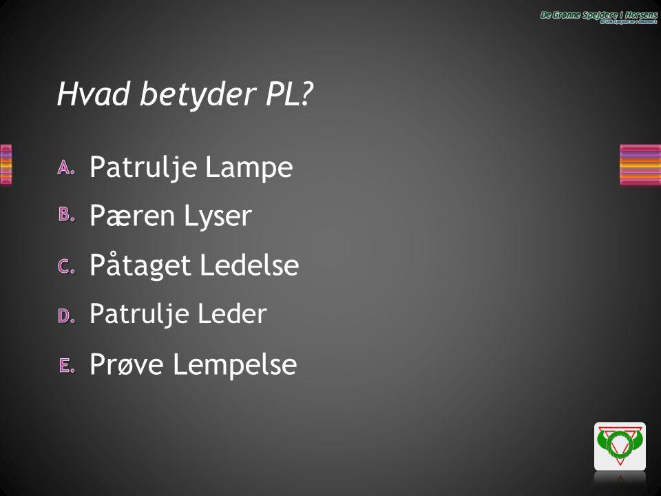 Hvad betyder PL Patrulje Lampe Pæren Lyser Påtaget Ledelse