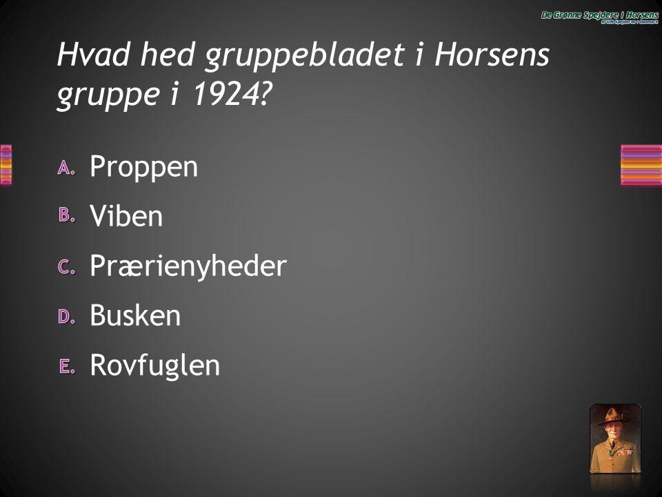 Hvad hed gruppebladet i Horsens gruppe i 1924