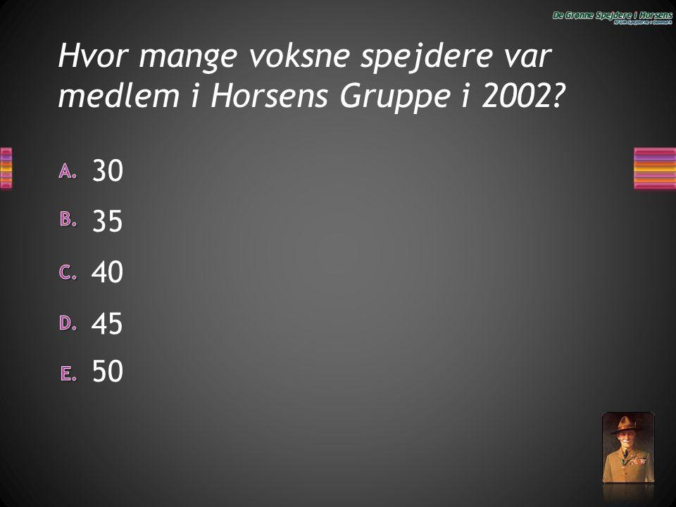 Hvor mange voksne spejdere var medlem i Horsens Gruppe i 2002