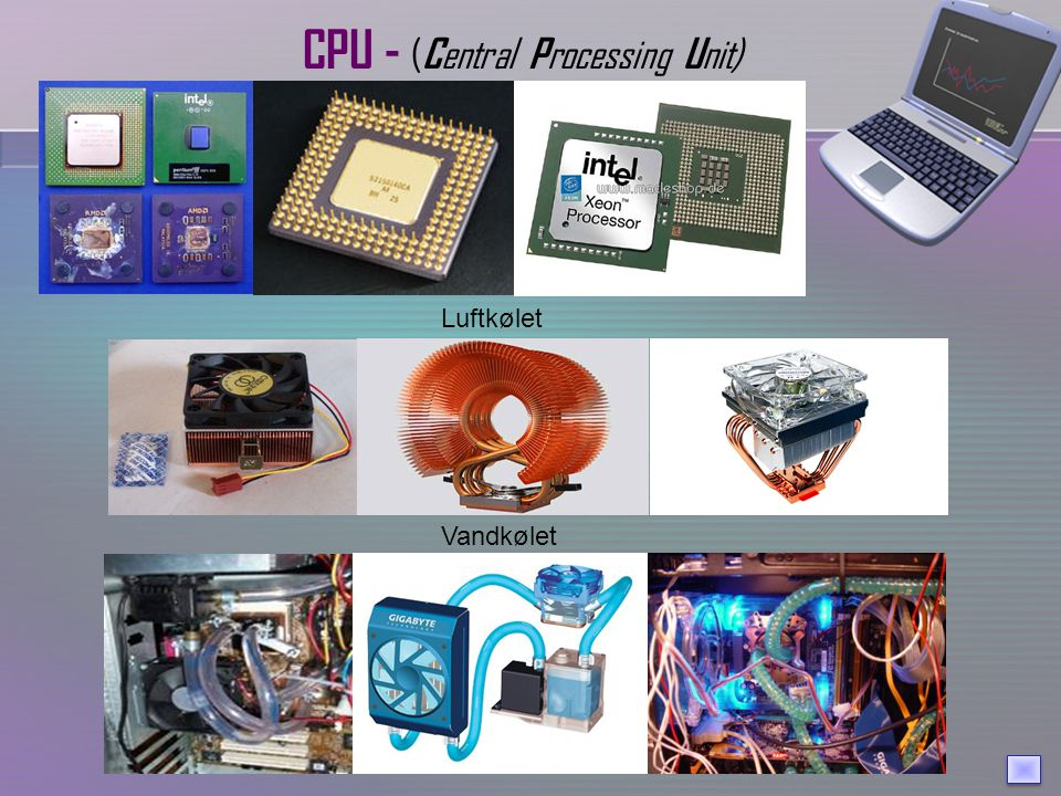 CPU - (Central Processing Unit)