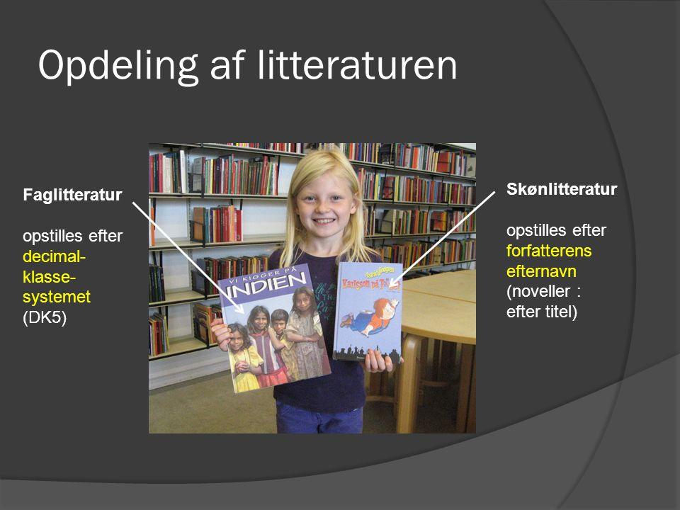 Opdeling af litteraturen