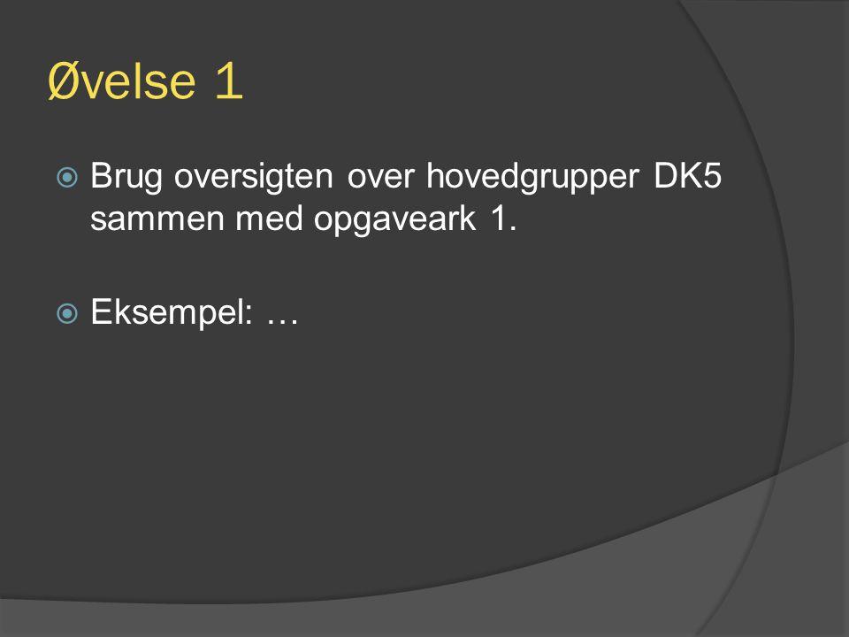 Øvelse 1 Brug oversigten over hovedgrupper DK5 sammen med opgaveark 1.