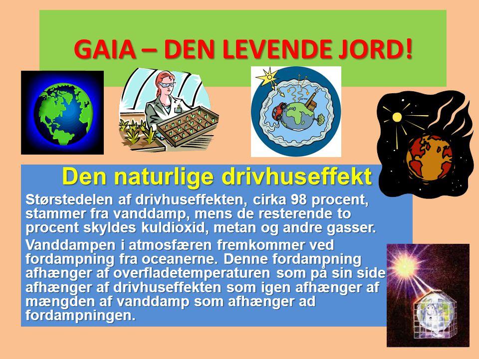 Den naturlige drivhuseffekt