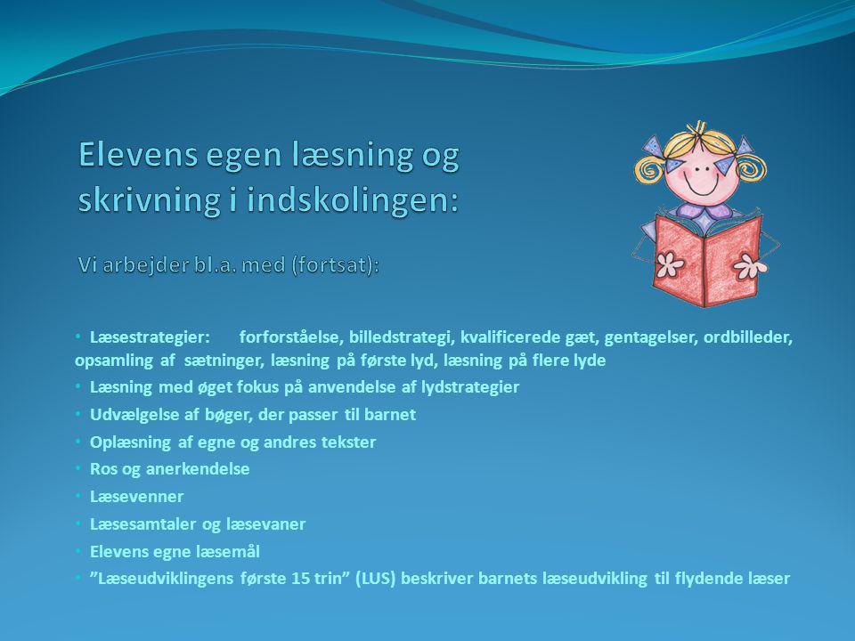 Læsestrategier: forforståelse, billedstrategi, kvalificerede gæt, gentagelser, ordbilleder, opsamling af sætninger, læsning på første lyd, læsning på flere lyde