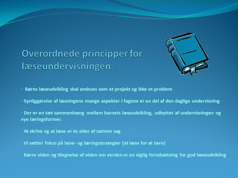 Overordnede principper for læseundervisningen: