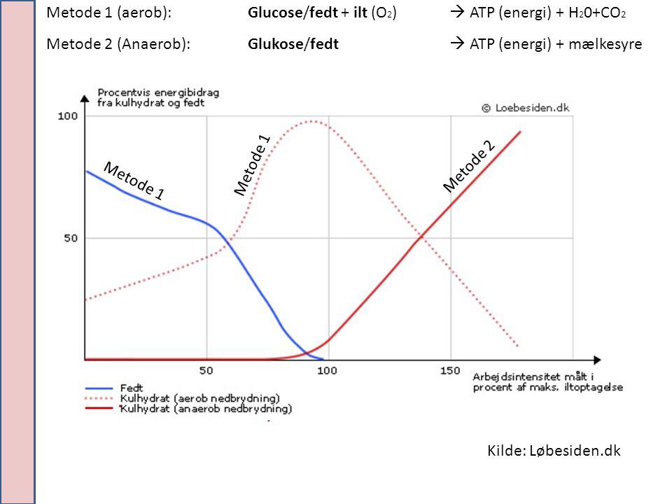Metode 1 (aerob): Glucose/fedt + ilt (O2)  ATP (energi) + H20+CO2