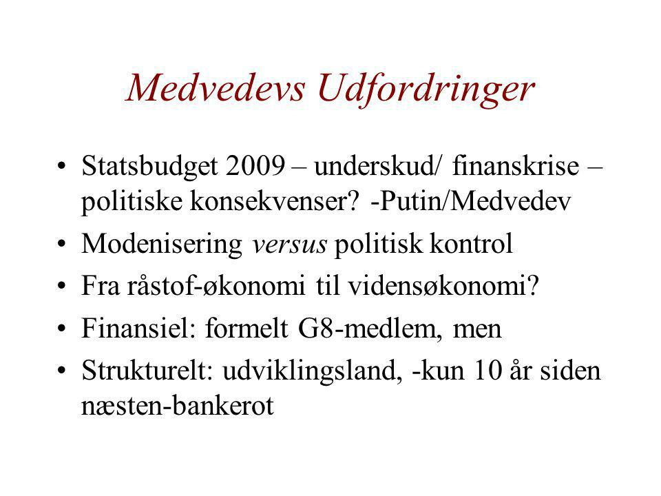 Medvedevs Udfordringer