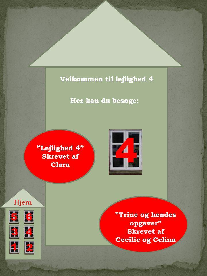 Velkommen til lejlighed 4