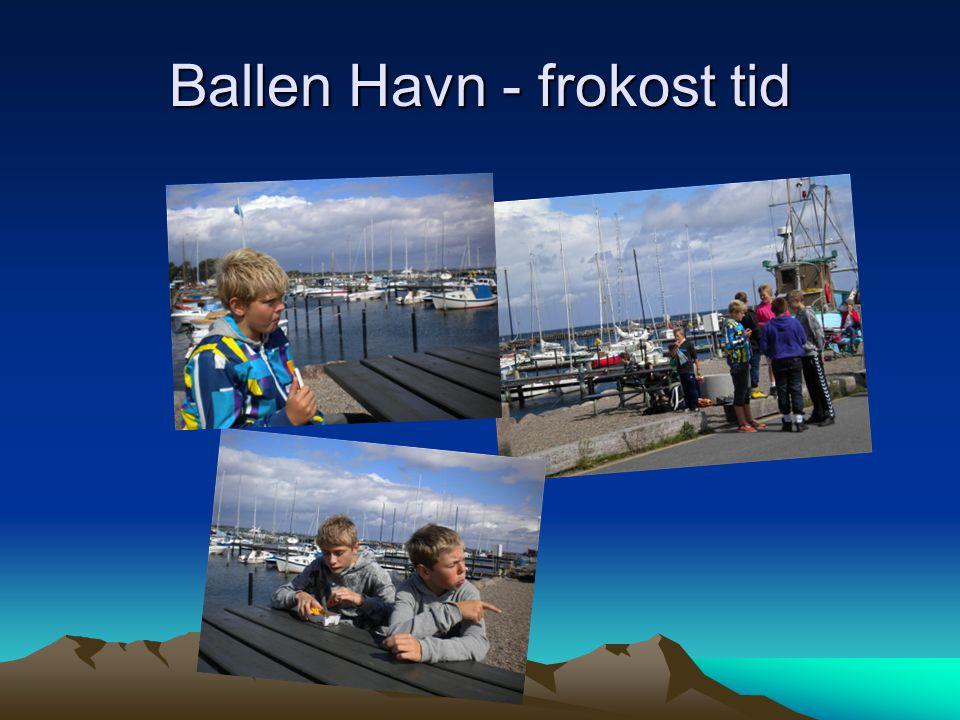Ballen Havn - frokost tid