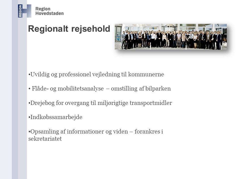 Regionalt rejsehold Uvildig og professionel vejledning til kommunerne