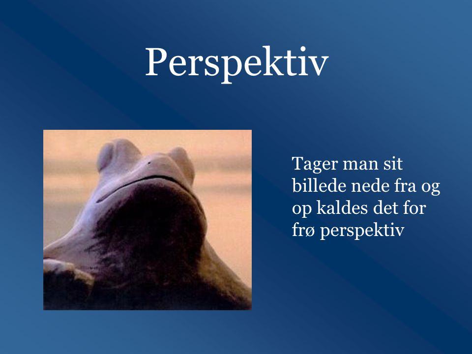 Perspektiv Tager man sit billede nede fra og op kaldes det for frø perspektiv