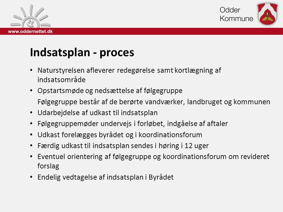 Indsatsplan - proces Naturstyrelsen afleverer redegørelse samt kortlægning af indsatsområde. Opstartsmøde og nedsættelse af følgegruppe.