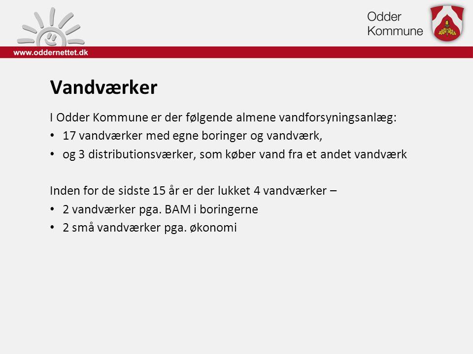 Vandværker I Odder Kommune er der følgende almene vandforsyningsanlæg: