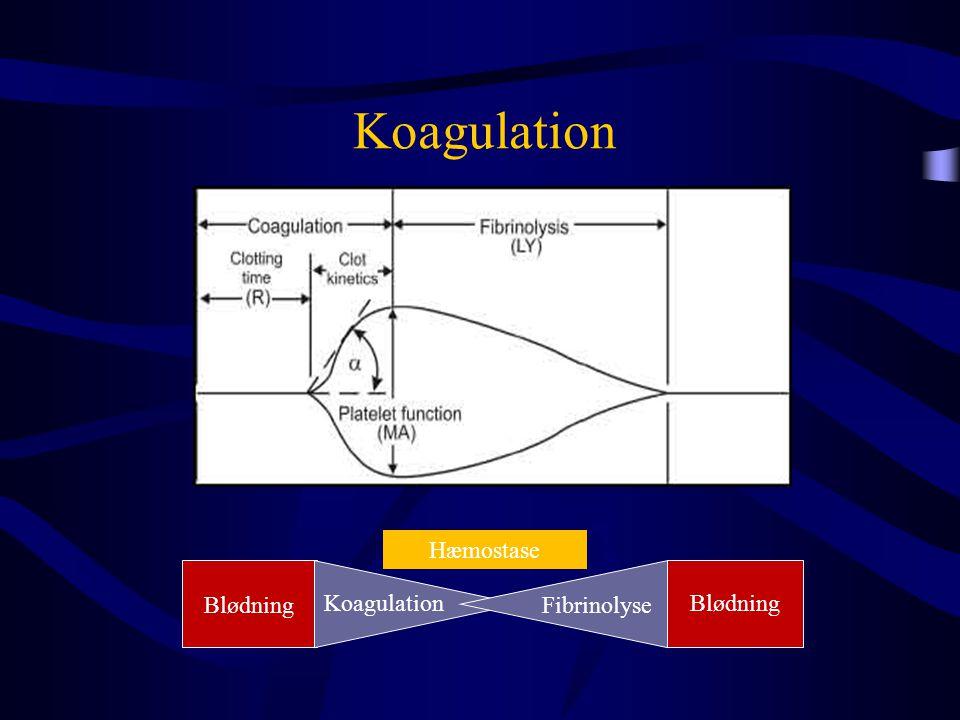 Koagulation Hæmostase Blødning Koagulation Fibrinolyse Blødning