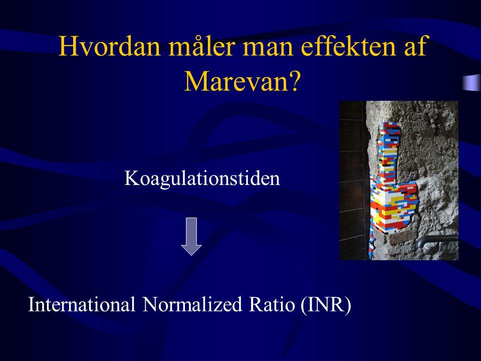 Hvordan måler man effekten af Marevan