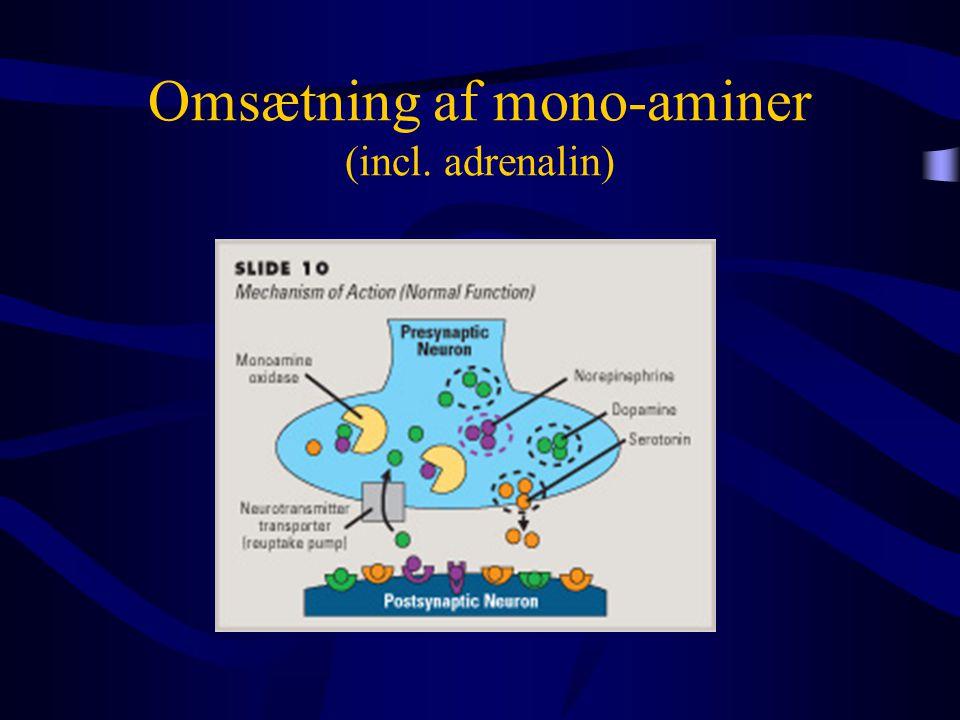 Omsætning af mono-aminer (incl. adrenalin)