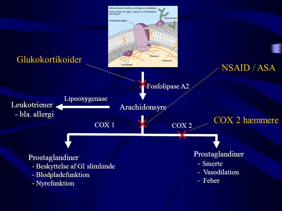 Glukokortikoider NSAID / ASA COX 2 hæmmere Leukotriener Arachidonsyre