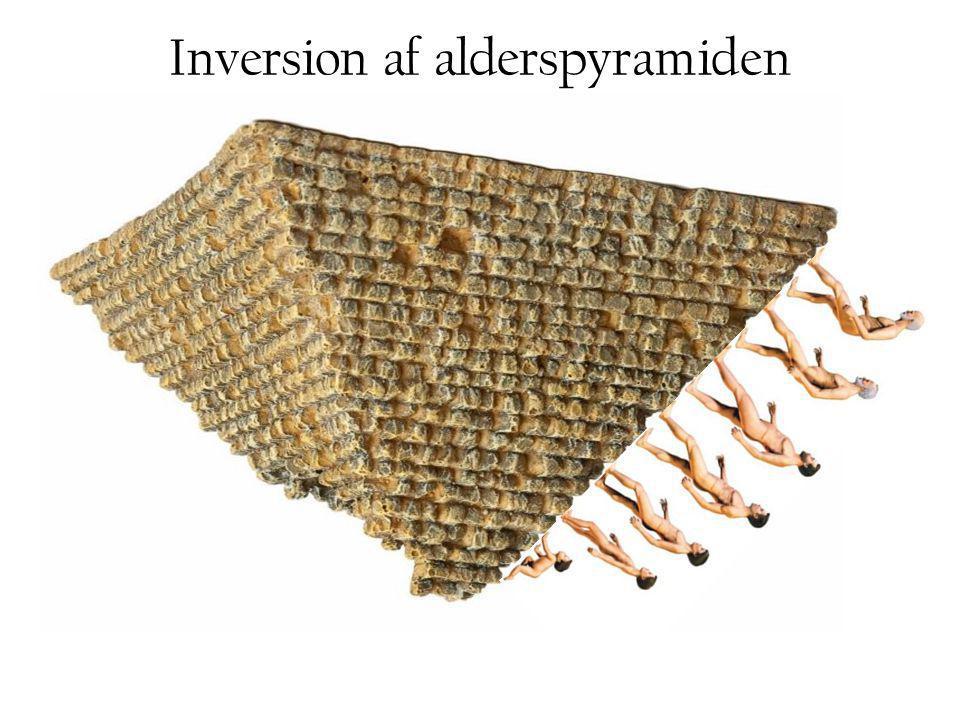 Inversion af alderspyramiden