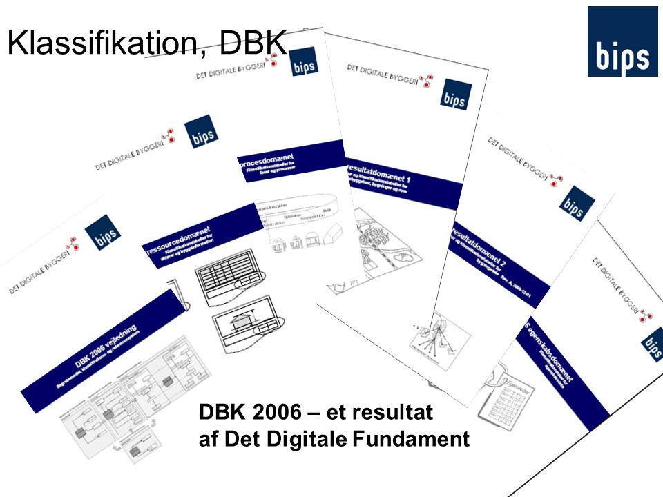 Klassifikation, DBK DBK 2006 – et resultat af Det Digitale Fundament