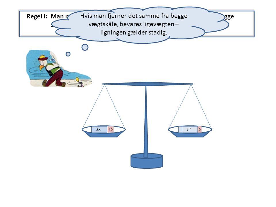 Hvis man fjerner det samme fra begge vægtskåle, bevares ligevægten – ligningen gælder stadig.