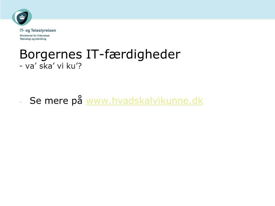 Borgernes IT-færdigheder - va' ska' vi ku'