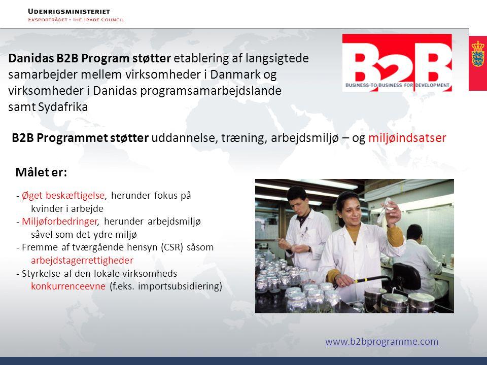 Danidas B2B Program støtter etablering af langsigtede samarbejder mellem virksomheder i Danmark og virksomheder i Danidas programsamarbejdslande