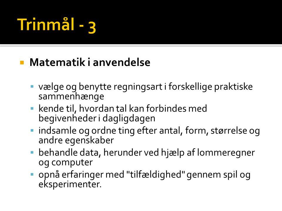Trinmål - 3 Matematik i anvendelse