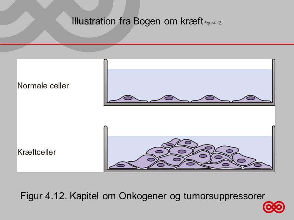 Illustration fra Bogen om kræft figur 4.12.