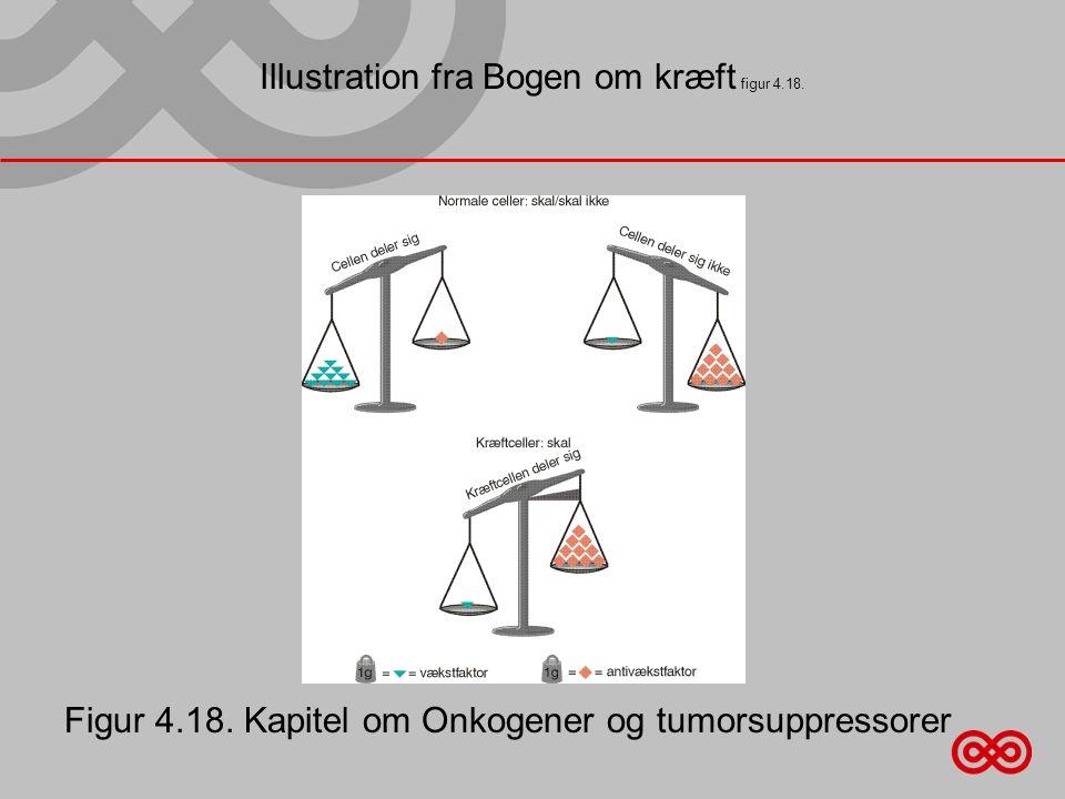 Illustration fra Bogen om kræft figur 4.18.