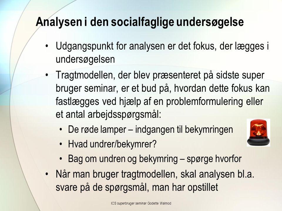 Analysen i den socialfaglige undersøgelse