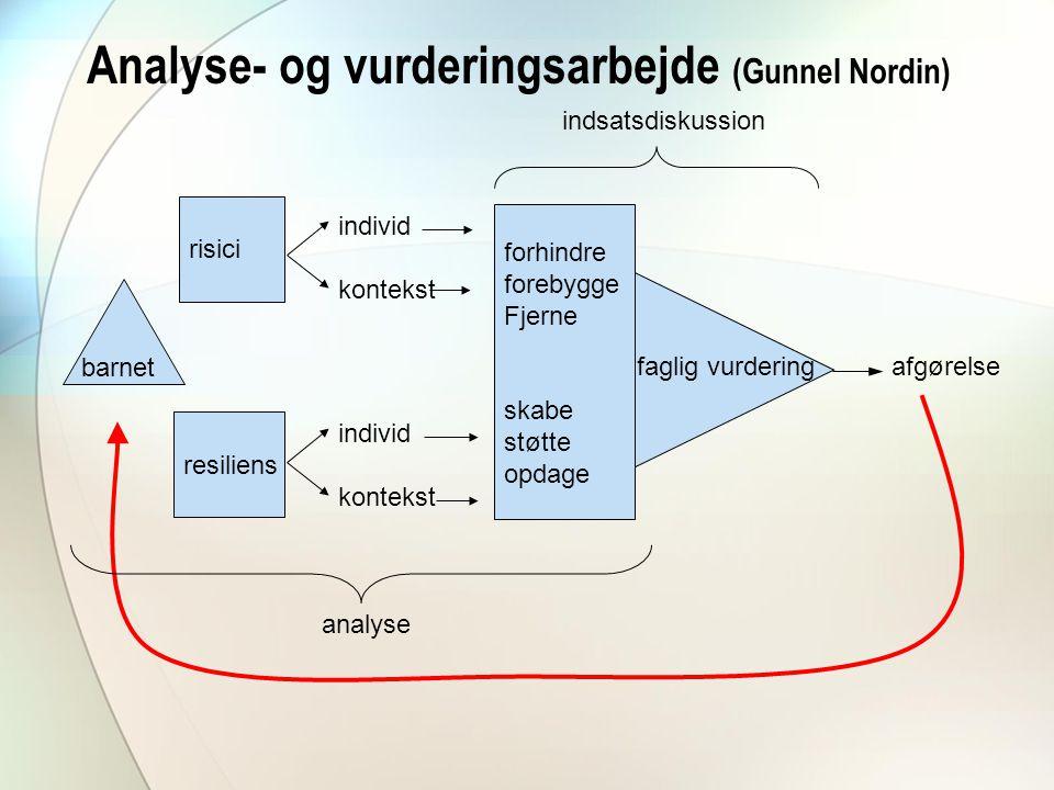 Analyse- og vurderingsarbejde (Gunnel Nordin)