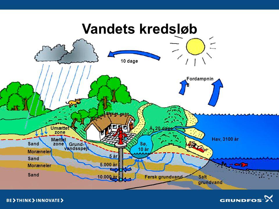 Vandets kredsløb 10 dage Fordampning Umættet zone Å, 20 dage