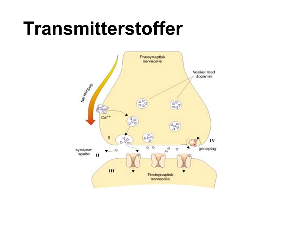 Transmitterstoffer