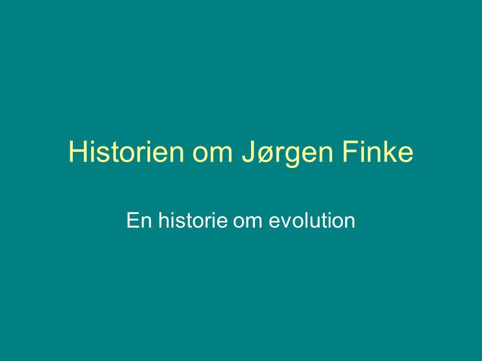 Historien om Jørgen Finke