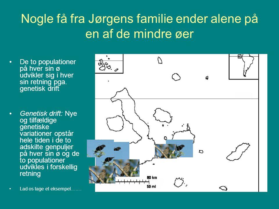 Nogle få fra Jørgens familie ender alene på en af de mindre øer