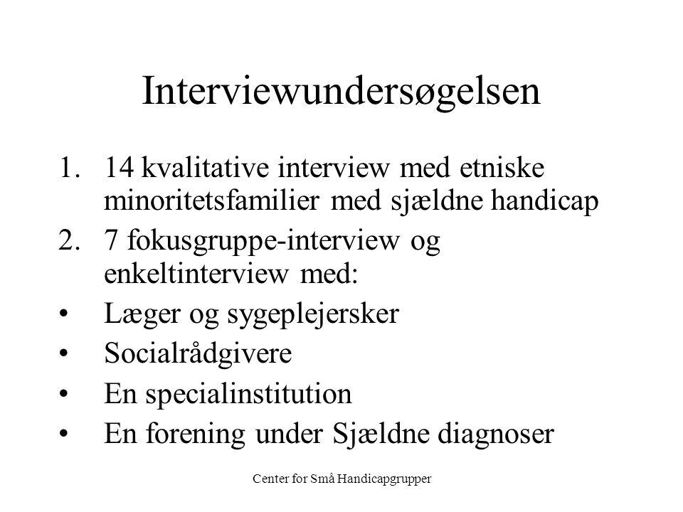 Interviewundersøgelsen